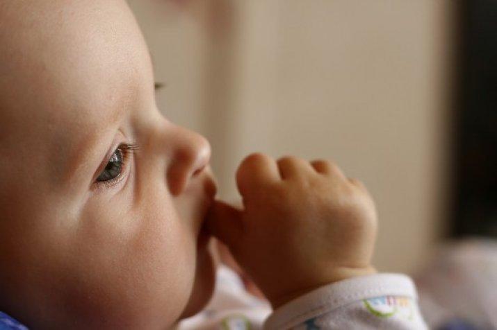 Коэффициент Смертности Среди Новорожденных
